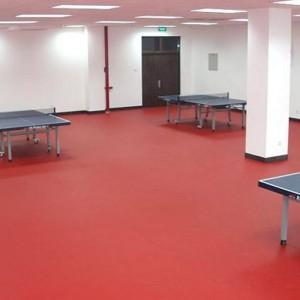 Table Tennis Court Mats Big Weave Pattern 1336