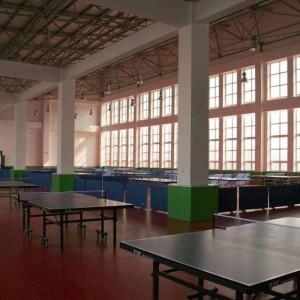 Table Tennis Court Floor Weave Pattern 1305R