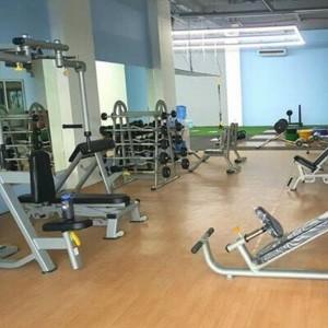 Indoor PVC Flooring Rolls for Fitness Maple Pattern 1323H