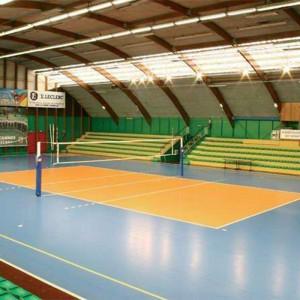 Vollyball Court Flooring Gem Pattern 1301G