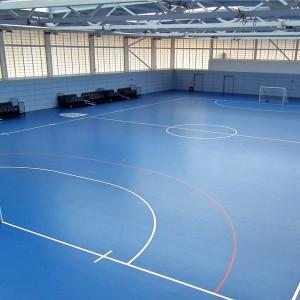 PVC Sports Floor for Handball Court Depoard Pattern 1332